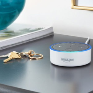 Amazon Echo Dot Christmas