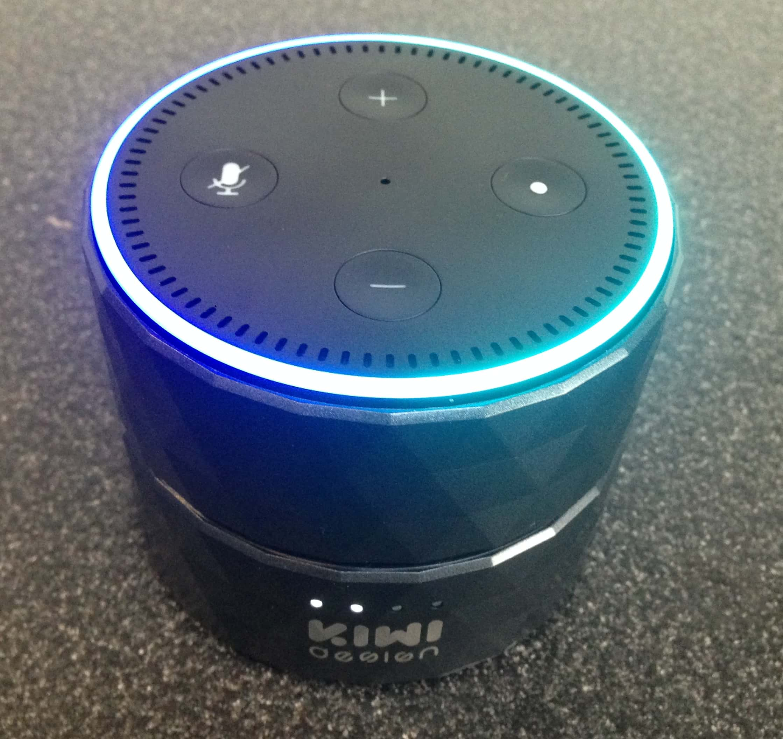 Amazon Echo Dot Battery Review UK
